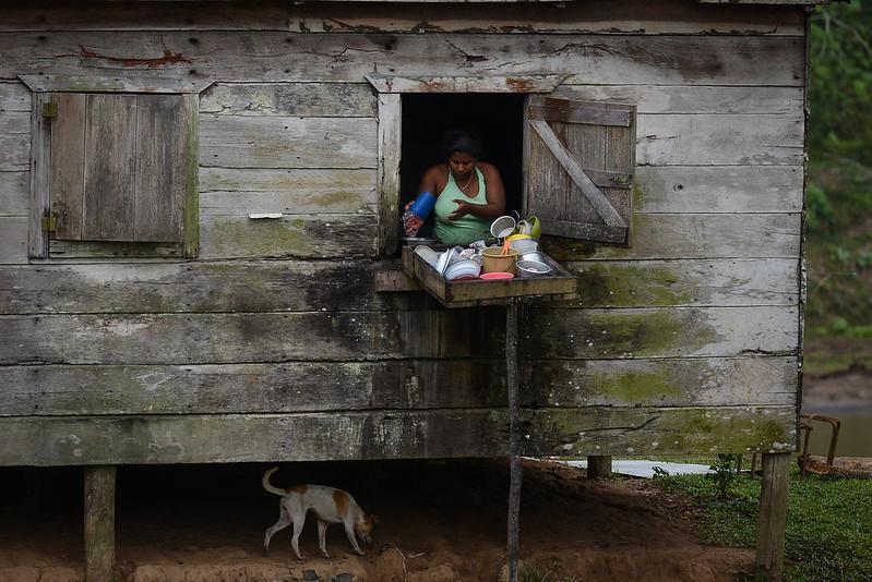 La invasión de tierra afecta a casi todas las comunidades indígenas, así que el número de desplazados puede ser más. Carlos Herrera | Divergentes.